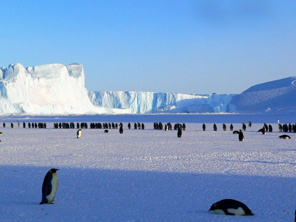 南極大陸(氷雪気候、EF気候)