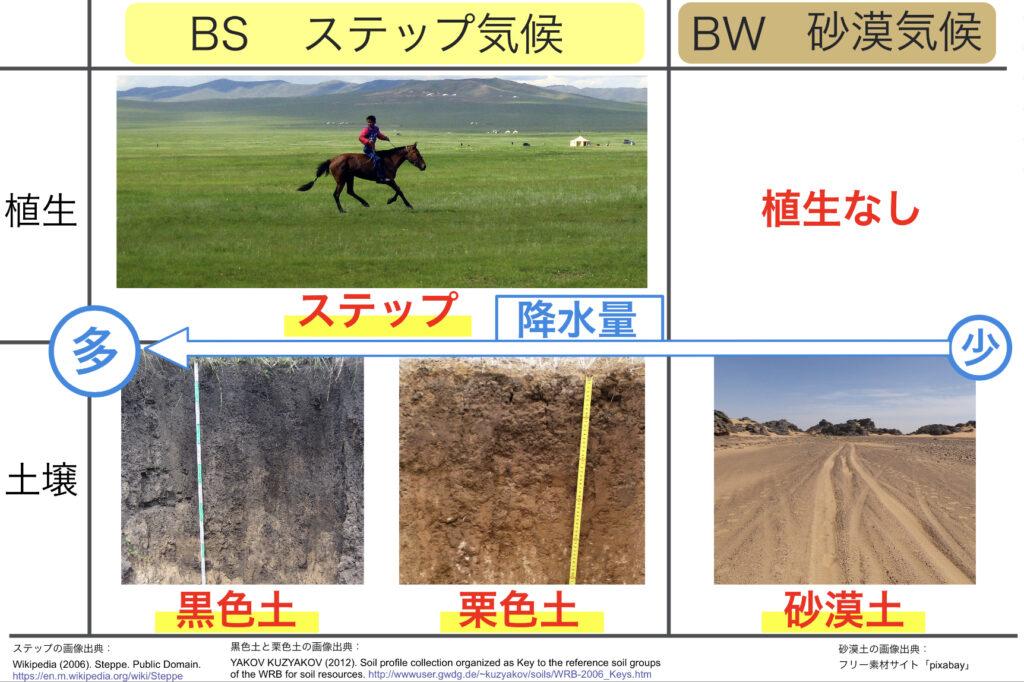 乾燥帯の植生と土壌