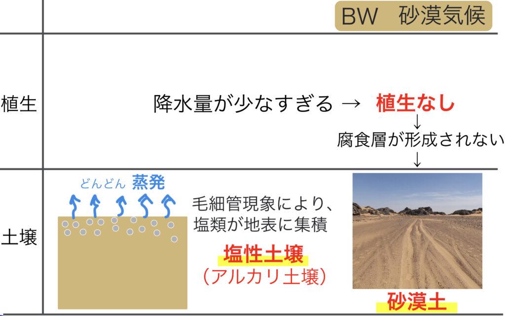 砂漠土が形成される仕組み